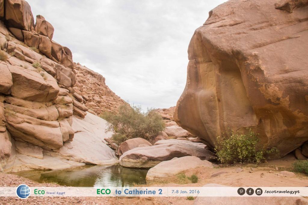 Catherine_Sinai_Egypt