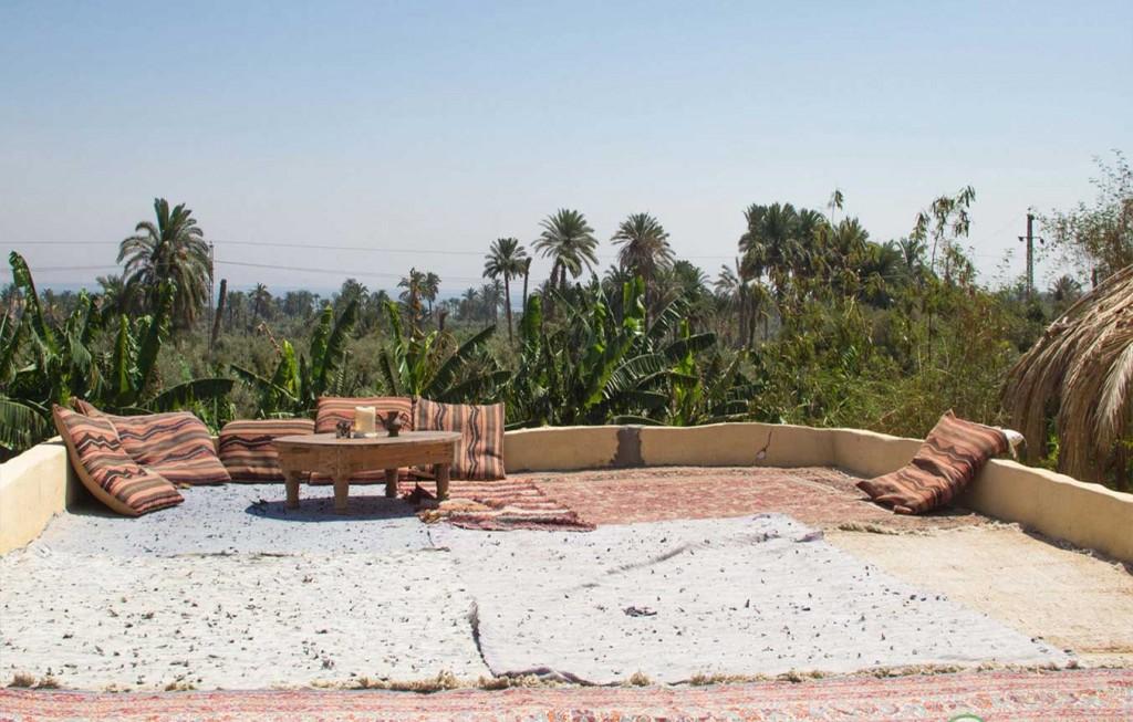 قرية تونس بمحافظة الفيوم