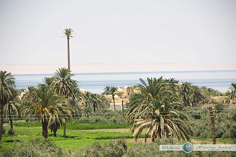 Tunis Village_Fayoum_Egypt