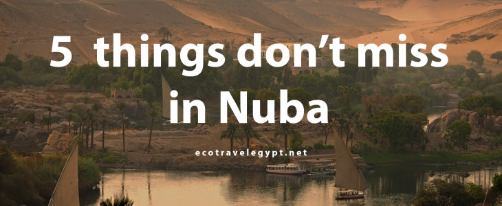 5 things Don't miss in Nubia